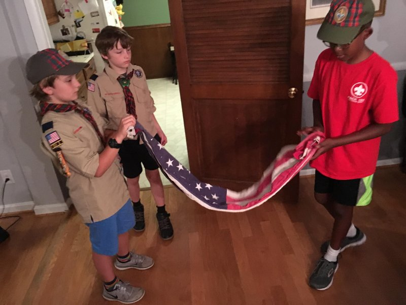 Learning to Fold the Flag