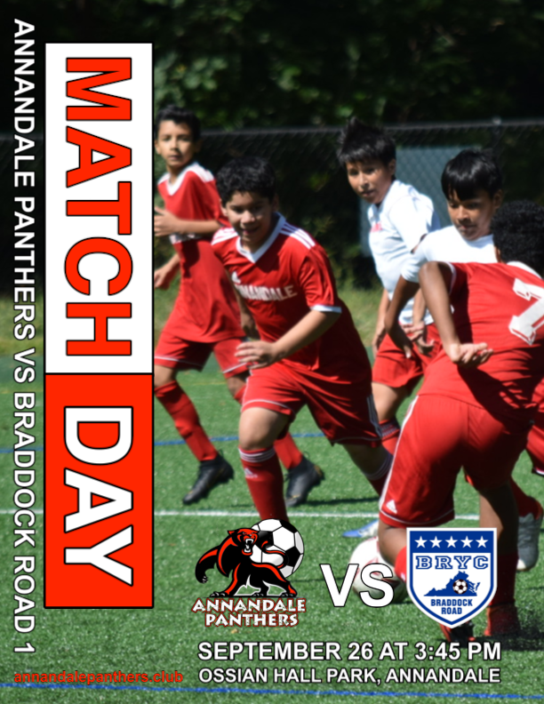 Match 2 Preview: Annandale Panthers vs. Braddock Road 1